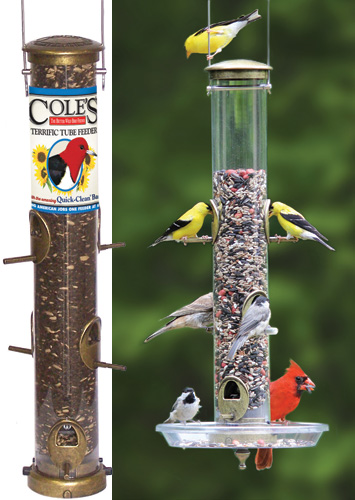 Feeders Are The Most Common Type Of Feeder Because They Easy To Fill Hang Or Post Mount Length Perches Determines Bird Species